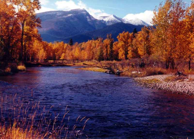 Fall Colors on the Bitterroot Fall Colors  RV Camping  Bitterrroot River